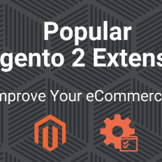 Top 15 Magento 2 Extensions For Your eCommerce Store - Ecomitize