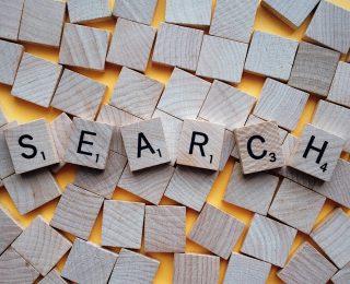 website internal search