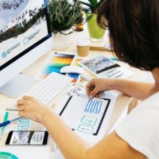 Best eCommerce Website Designs: Way to Success